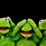 Extraer contenido específico con Screaming Frog
