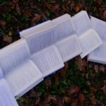 """Scroll infinito, """"Cargar más"""" o paginación tradicional: ¿cuál elegir?"""
